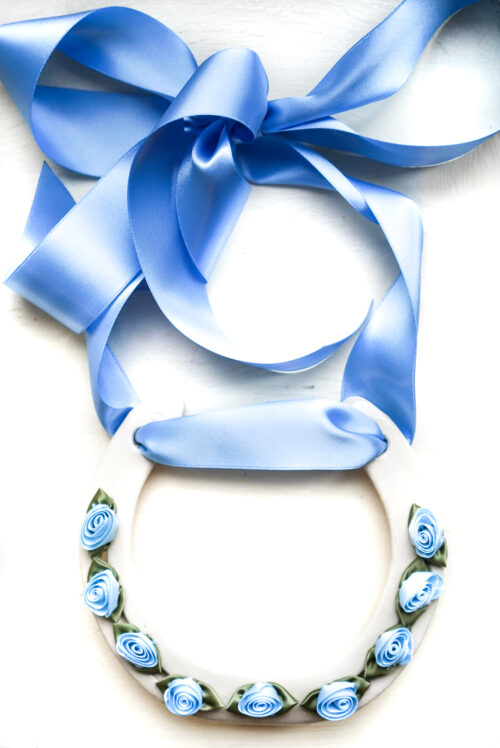 blue ribbon horse shoe